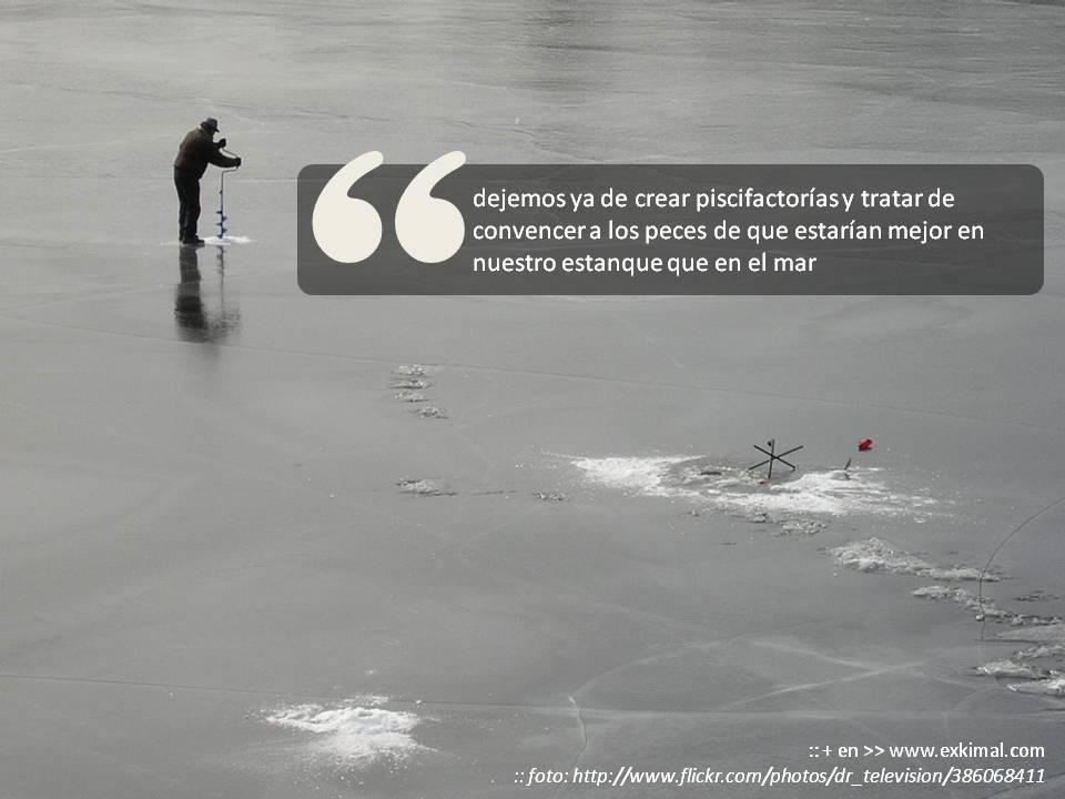 pesca de usuarios